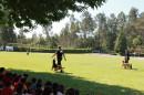 Natureza e Deporte - Festa despedida 15-16 (290)